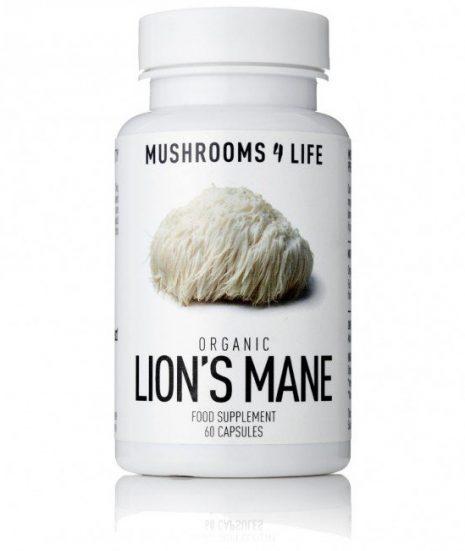 buy Lion Mane