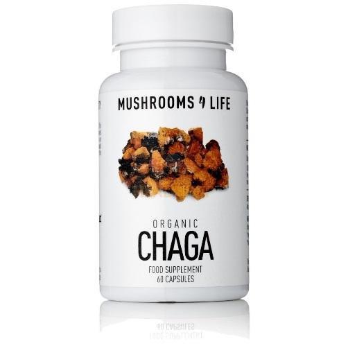 Buy Chaga Mushroom