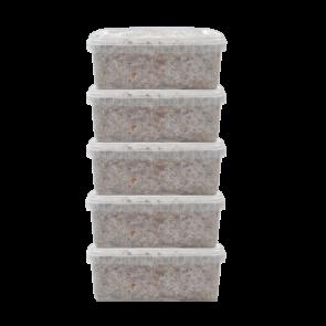 5 Magic Mushroom grow kit