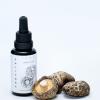 Buy Shiitake mushroom tincture