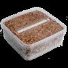 Magic Mushroom Grow Kit Cambodia XL by Mondo